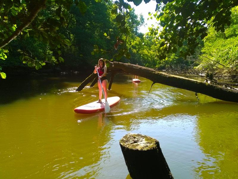 Balade sur la Leyre en Stand-up Paddle