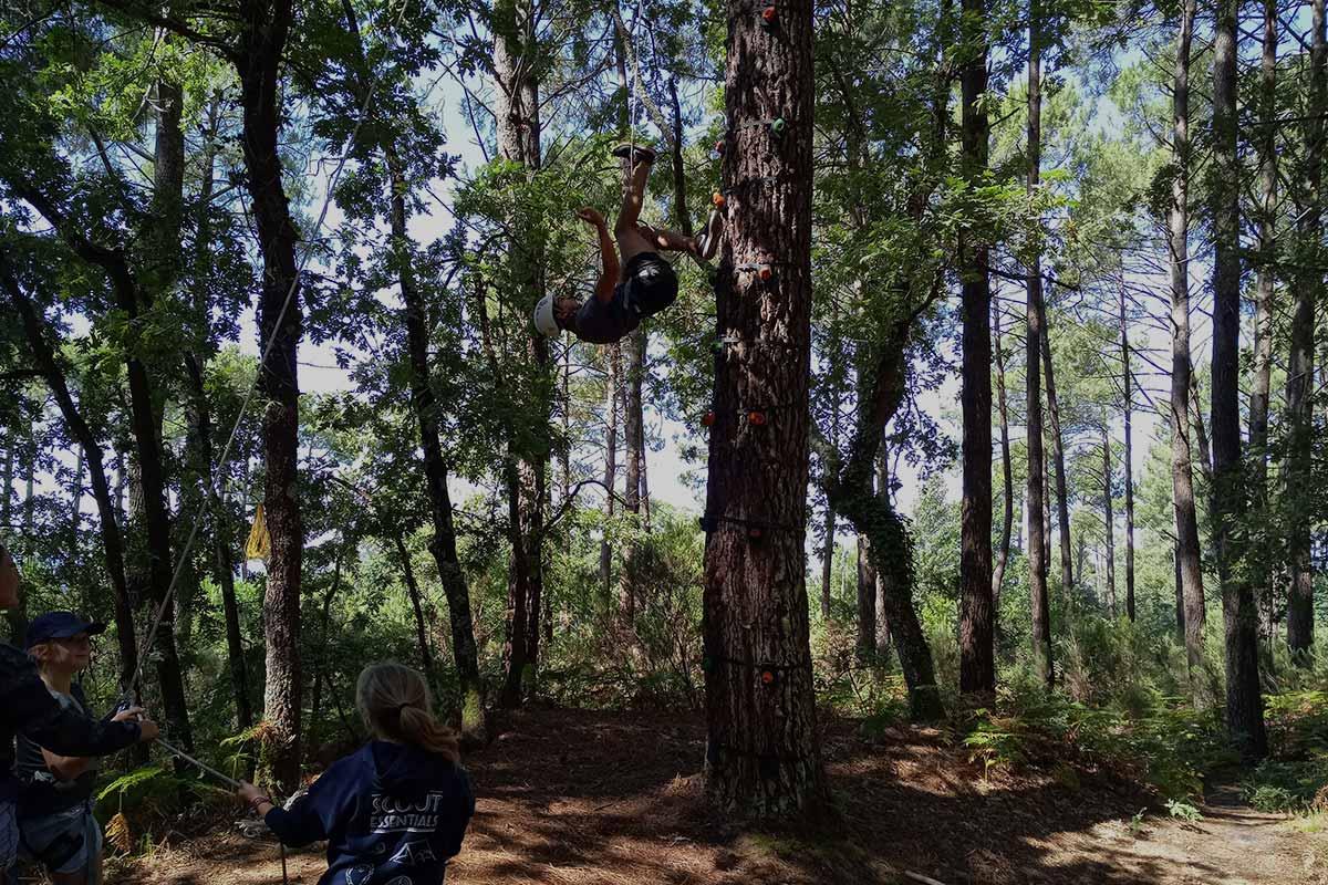 grimpe d'arbre arcachon